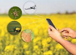 Controlul activitatii cu ajutorul celui mai performant program de gestiune pentru agricultura